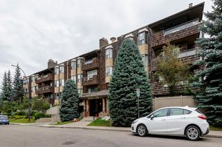 Photo 31: 310 3730 50 Street NW in Calgary: Varsity Apartment for sale : MLS®# A1148662
