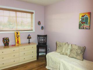 "Photo 12: 10390 244 Street in Maple Ridge: Albion House for sale in ""CALEDON LANDING"" : MLS®# R2229121"