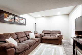 Photo 32: 27 Saddlebrook Place NE in Calgary: Saddle Ridge Semi Detached for sale : MLS®# A1122360