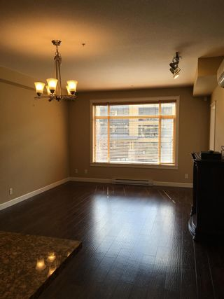 Photo 7: 356 8258 207A Street in Langley: Willoughby Heights Condo for sale : MLS®# R2485556