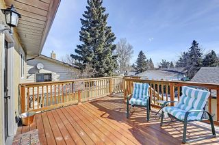 Photo 25: 47 Stafford Street: Crossfield House for sale : MLS®# C4179003