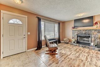 Photo 15: 424 Cole Crescent: Carseland Detached for sale : MLS®# A1106001