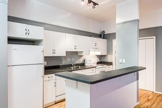 Photo 14: 309 1410 2 Street SW in Calgary: Beltline Apartment for sale : MLS®# A1143810