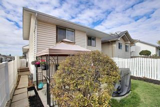 Photo 25: 305 Martinwood Place NE in Calgary: Martindale Detached for sale : MLS®# A1038589