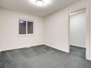 Photo 39: 250 MAHOGANY Place SE in Calgary: Mahogany Detached for sale : MLS®# A1069286