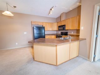 Photo 3: 215 226 MACEWAN Road in Edmonton: Zone 55 Condo for sale : MLS®# E4241529