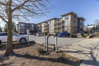"Photo 19: 114 2515 PARK Drive in Abbotsford: Central Abbotsford Condo for sale in ""VIVA ON PARK"" : MLS®# R2446836"