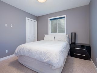 Photo 27: 155 Skyview Shores Crescent NE in Calgary: Skyview Ranch Detached for sale : MLS®# A1110098