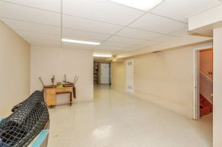 Photo 15: 561 W 65TH Avenue in Vancouver: Marpole House for sale (Vancouver West)  : MLS®# R2516729