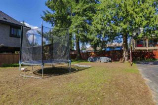Photo 18:  in Coquitlam: Central Coquitlam House for sale : MLS®# R2050140