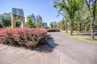 Photo 41: 231 222 RIVERFRONT Avenue SW in Calgary: Chinatown Apartment for sale : MLS®# A1091480