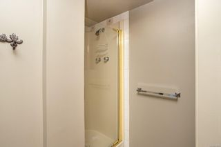 Photo 46: 1319 Tolmie Ave in : Vi Mayfair House for sale (Victoria)  : MLS®# 878655