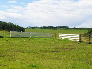 Photo 12: Range Road 41: Rural Mountain View County House for sale : MLS®# C3641299