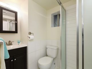 Photo 11: 4024 Carey Rd in : SW Marigold House for sale (Saanich West)  : MLS®# 876555