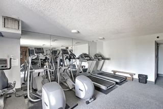 Photo 24: 104 30 Mchugh Court NE in Calgary: Mayland Heights Apartment for sale : MLS®# A1123350