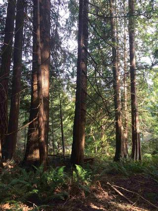 Photo 4: LOT 19 PARK AVENUE: Keats Island Land for sale (Sunshine Coast)  : MLS®# R2550925