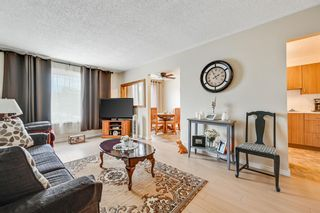 Photo 7: 313 42 Street SE in Calgary: Forest Heights Semi Detached for sale : MLS®# A1118275