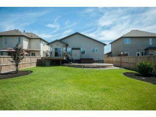 Photo 19: 78 Powder Ridge Drive in WINNIPEG: River Heights / Tuxedo / Linden Woods Residential for sale (South Winnipeg)  : MLS®# 1213397