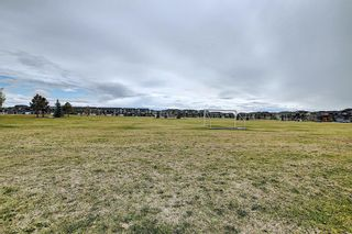 Photo 36: 63 Redstone Circle NE in Calgary: Redstone Row/Townhouse for sale : MLS®# A1141777