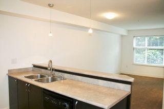 """Photo 12: 115 2515 PARK Street in Abbotsford: Abbotsford East Condo for sale in """"Viva on Park"""" : MLS®# R2255582"""