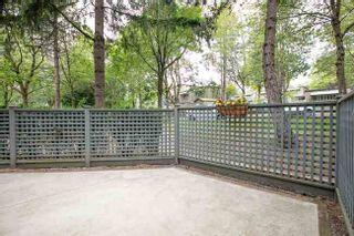 Photo 17: 3370 MARQUETTE CRESCENT in Champlain Ridge: Champlain Heights Condo for sale ()  : MLS®# R2420026