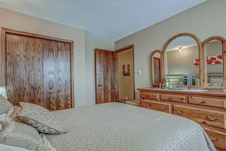 Photo 31: 87 Bermuda Close NW in Calgary: Beddington Heights Detached for sale : MLS®# A1073222