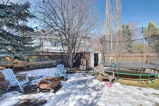 Photo 46:  in Calgary: Valley Ridge Detached for sale : MLS®# A1081088