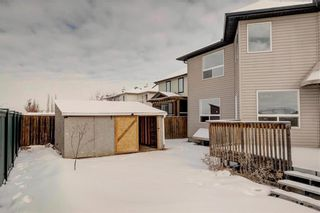 Photo 44: 268 Springmere Way: Chestermere Detached for sale : MLS®# C4287499