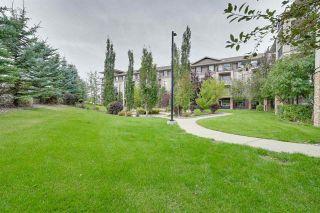 Photo 35: 216 1520 HAMMOND Gate in Edmonton: Zone 58 Condo for sale : MLS®# E4225767