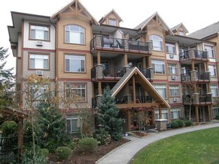 Photo 4: 205 12565 190A Street in CEDAR DOWNS: Home for sale : MLS®# r2207991