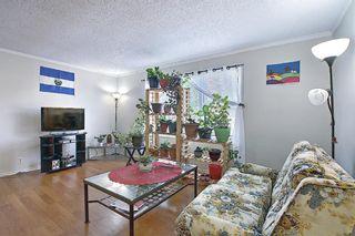 Photo 14: 180 Castledale Way NE in Calgary: Castleridge Detached for sale : MLS®# A1135509