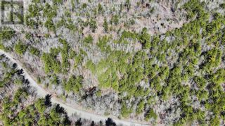 Photo 3: Lot 2 Labelle Road in Molega: Vacant Land for sale : MLS®# 202108292