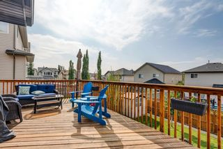 Photo 13: 17 Royal Birch Landing NW in Calgary: Royal Oak Residential for sale : MLS®# A1060735