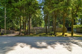 Photo 35: 14244 SILVER VALLEY Road in Maple Ridge: Silver Valley House for sale : MLS®# R2594780