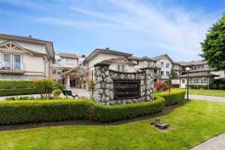 """Photo 1: 209 22150 48 Avenue in Langley: Murrayville Condo for sale in """"Eaglecrest"""" : MLS®# R2588897"""