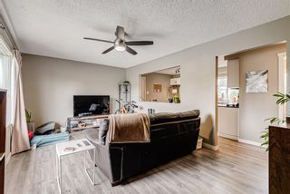 Photo 5: 8516 Bowness Road NW in Calgary: Bowness Detached for sale : MLS®# A1129149