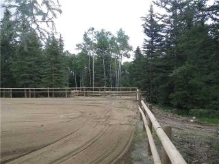 Photo 5: 2 miles west of Dartique Hall in COCHRANE: Rural Rocky View MD Rural Land for sale : MLS®# C3545361
