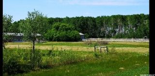 Photo 6: East Forest Acreage in Hudson Bay: Residential for sale (Hudson Bay Rm No. 394)  : MLS®# SK813358