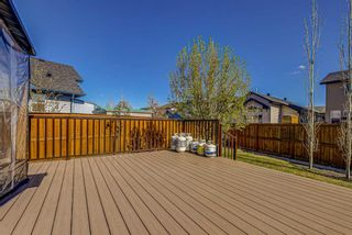 Photo 44: 26 BRIGHTONWOODS Bay SE in Calgary: New Brighton Detached for sale : MLS®# A1110362