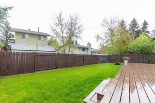 Photo 34: 132 Pineland Place NE in Calgary: Pineridge Detached for sale : MLS®# A1110576