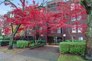 """Photo 19: 212 2920 ASH Street in Vancouver: Fairview VW Condo for sale in """"ASH COURT"""" (Vancouver West)  : MLS®# R2440976"""