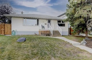 Photo 33: 3007 36 Street SW in Calgary: Killarney/Glengarry Detached for sale : MLS®# A1149415
