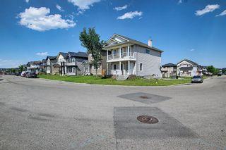 Photo 49: 311 TARALAKE Terrace NE in Calgary: Taradale Detached for sale : MLS®# A1128054