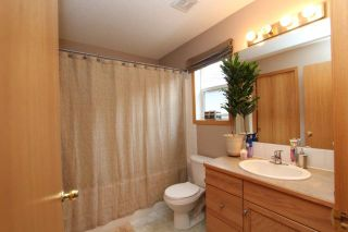 Photo 8: 184 STONEGATE Drive NW: Airdrie Residential Detached Single Family for sale : MLS®# C3621998