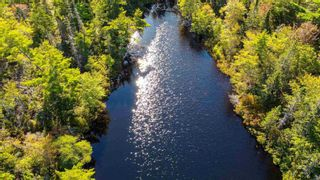 Photo 7: 2014 Myra Road in Porters Lake: 31-Lawrencetown, Lake Echo, Porters Lake Vacant Land for sale (Halifax-Dartmouth)  : MLS®# 202125407