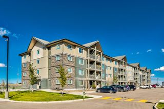 Main Photo: 3119 181 Skyview Ranch Manor NE in Calgary: Skyview Ranch Apartment for sale : MLS®# A1148271