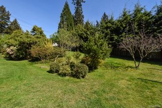 Photo 54: 810 Back Rd in : CV Courtenay East House for sale (Comox Valley)  : MLS®# 883531