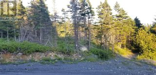 Photo 2: 18-24 Butts Road in Spaniard's Bay: Vacant Land for sale : MLS®# 1234275