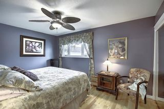 Photo 15: 5915 18 Avenue NE in Calgary: Pineridge Detached for sale : MLS®# A1032998