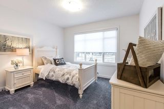 Photo 16: 59 Redspur Drive: St. Albert House for sale : MLS®# E4265918